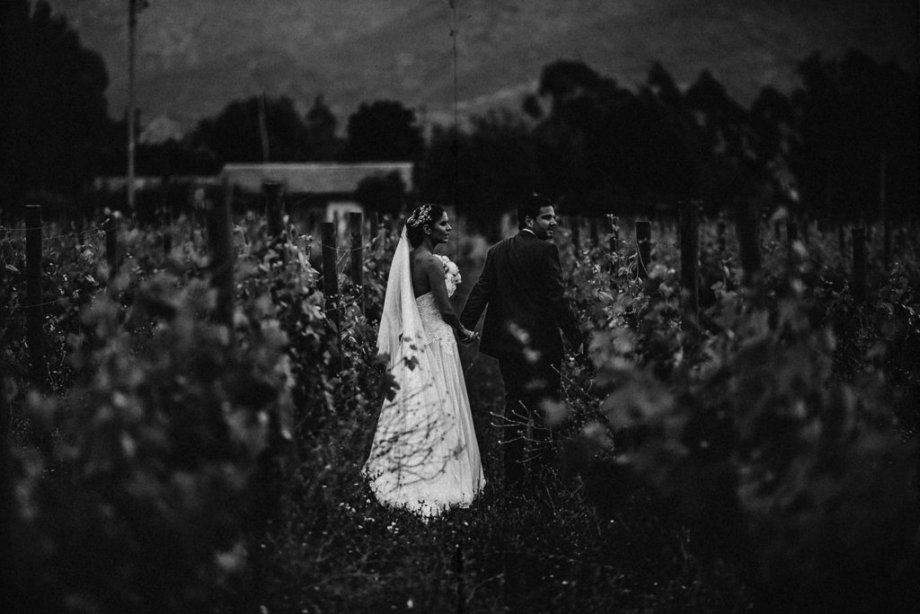 portrait of the couple walking in a vineyard