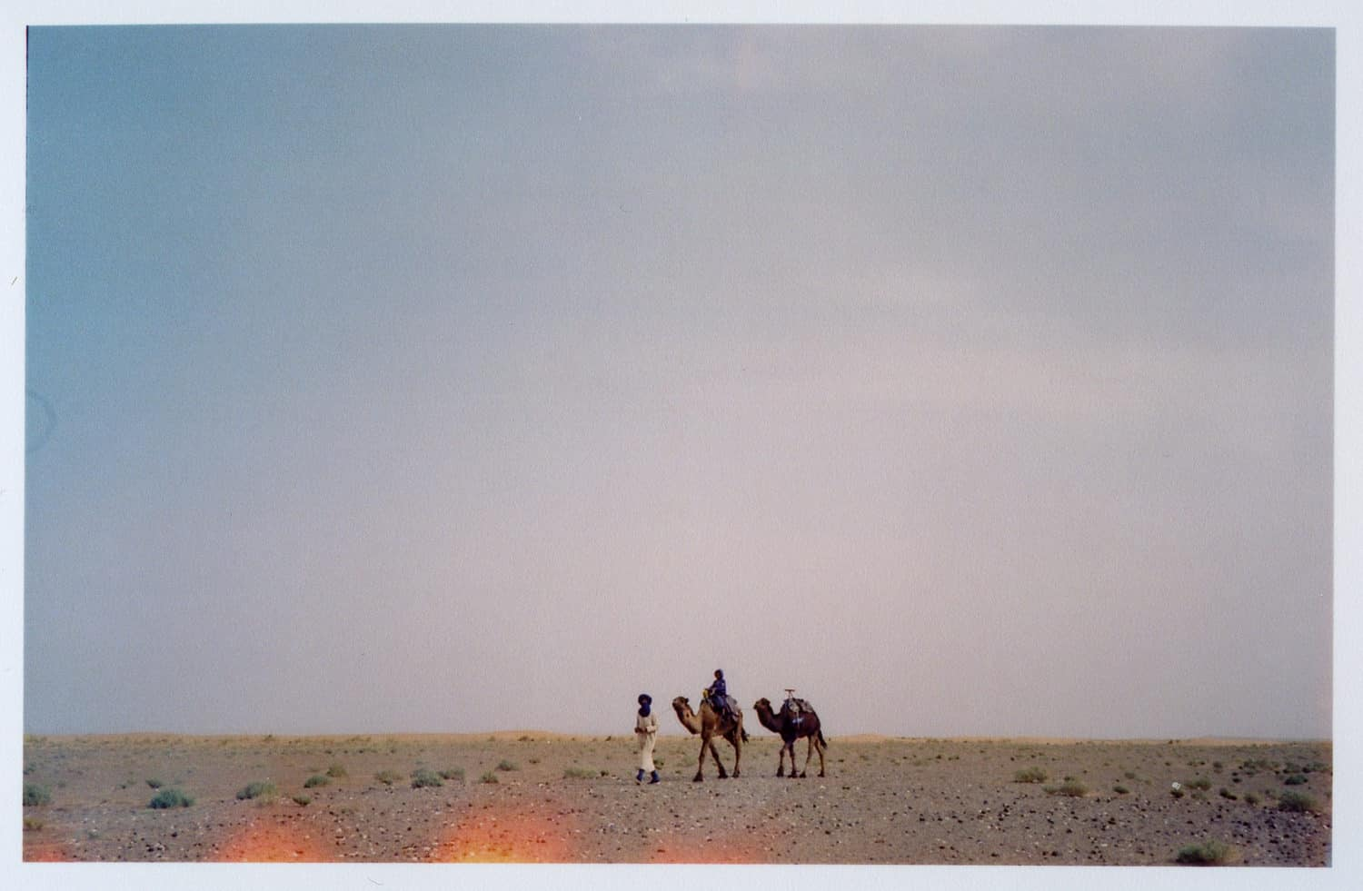 camels and bereber walking in the middle of the desert