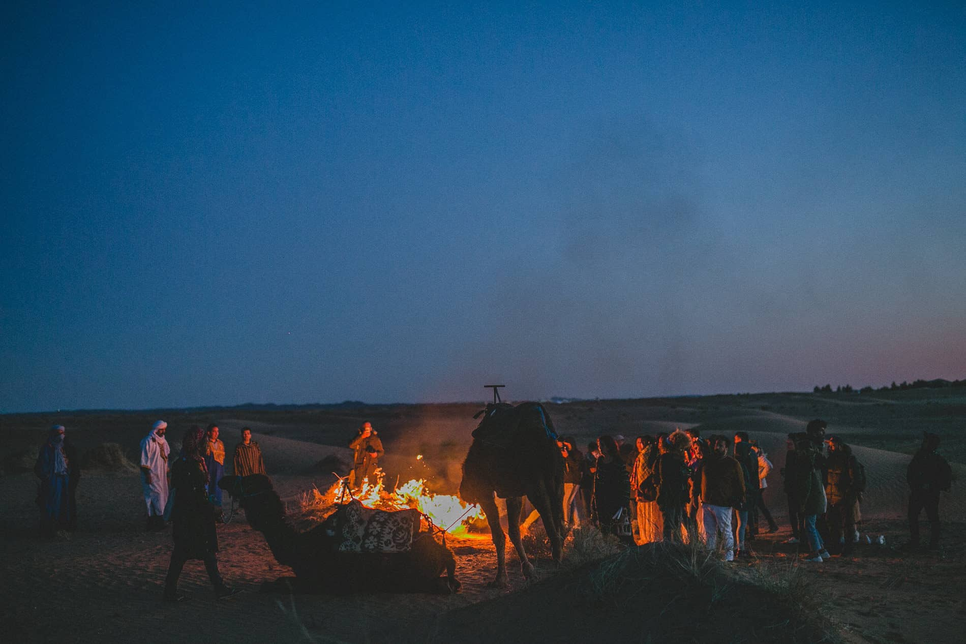 bonfire in the middle of the desert with camels