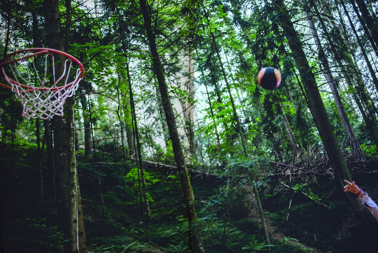 groom playing basketball in the middle of the forest