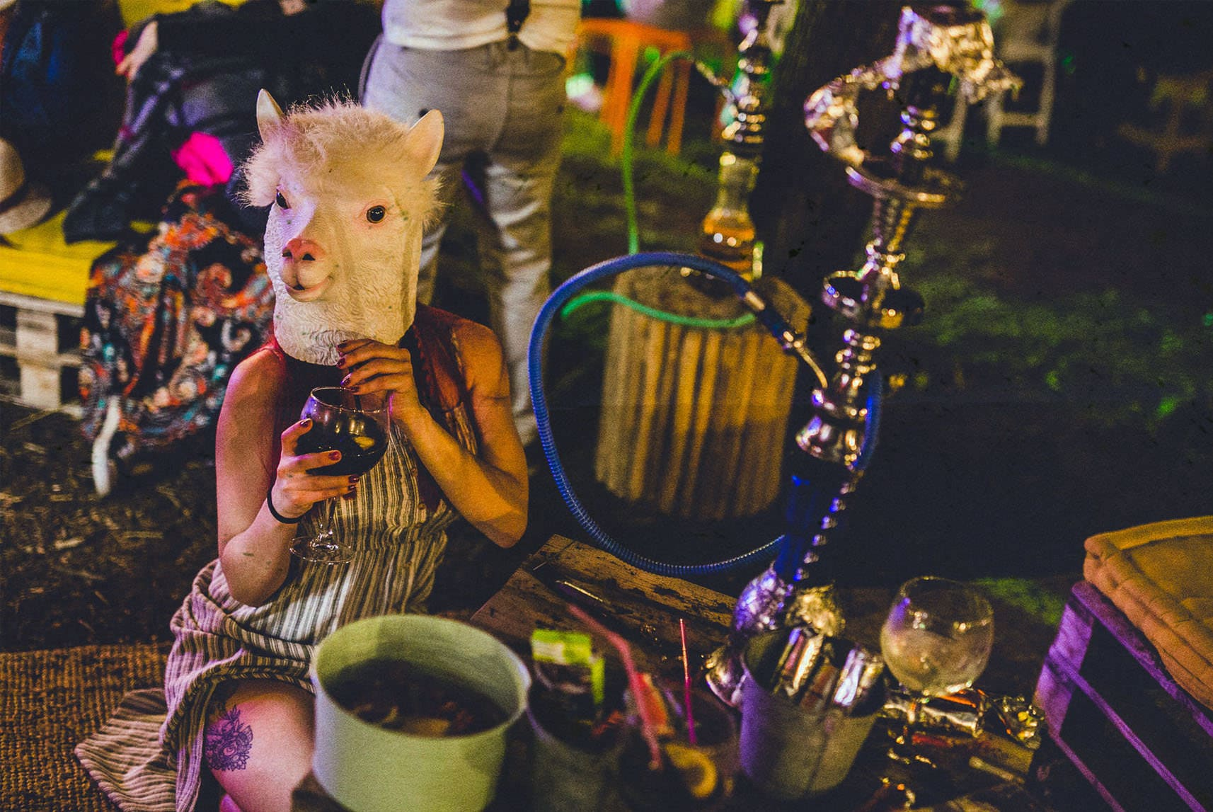 sheep smoking shisha