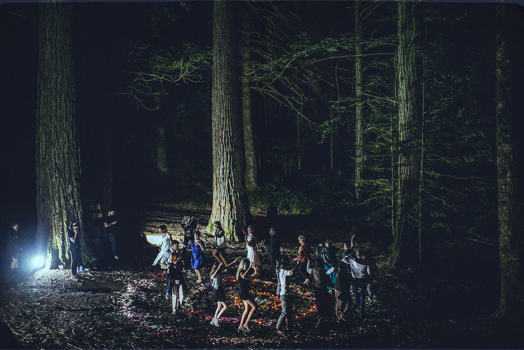 people dancing in between trees at night