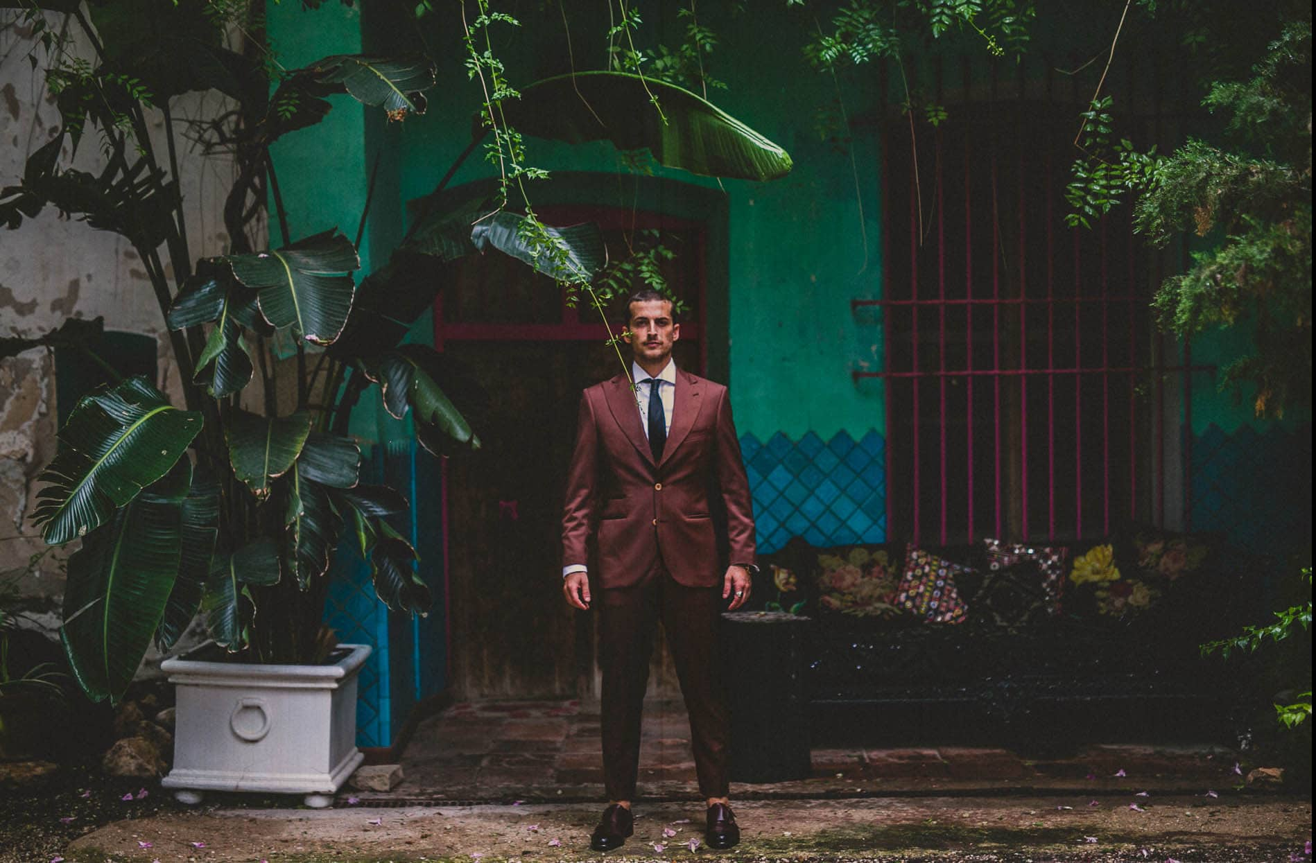 portrait of a groom between big plants
